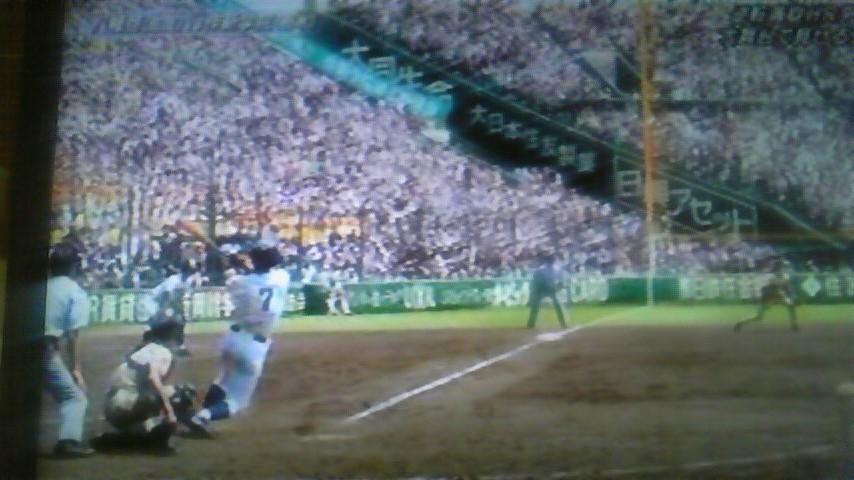 2011 夏〜思い出フォト〜