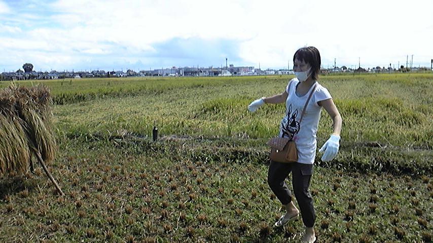 特別企画!収穫祭!秋!