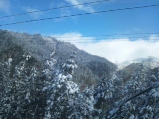 東北の旅……雪です